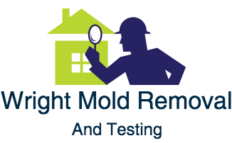 Wright Mold Removal & Testing